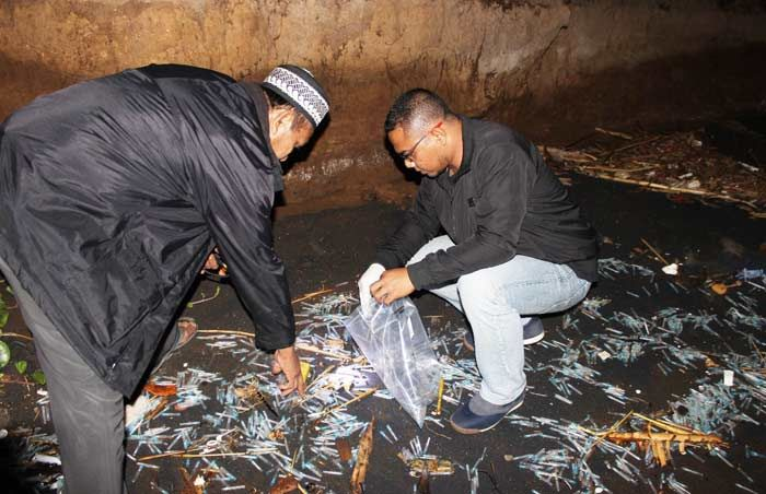Dinkes Pastikan Ribuan Limbah Medis Pesisir Tanjung Kamal Bukan Situbondo