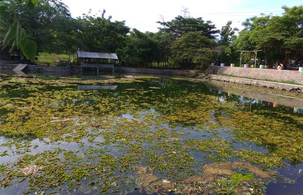 Kumuh Pengunjung Keluhkan Wisata Waduk Pitaloka Desa Curah Cottok Obyek