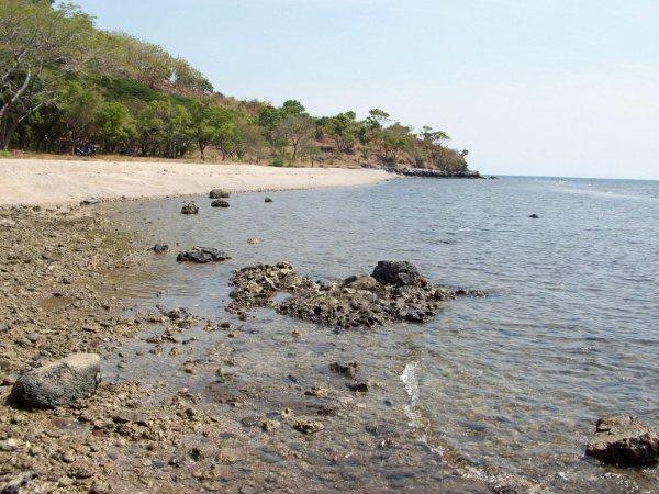 Besuki Sisi Terindah Tapal Kuda Www Radarbesuki Pantai Putih Tampuro