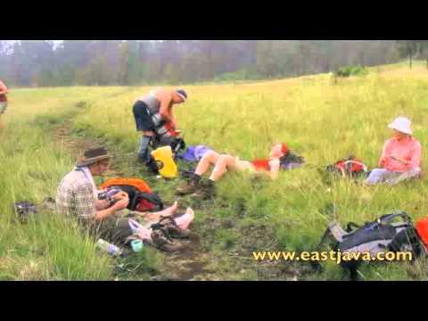 Pantai Tampora Besuki Situbondo Pusat Data Kabupaten Padang Rumput Sikasur