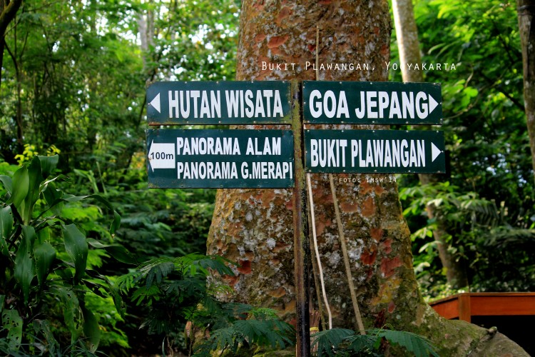10 Tempat Wisata Kaliurang Sleman Wajib Dikunjungi Ayowisata99 Taman Plawangan