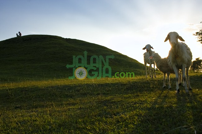 Candi Abang Piramida Pelindung Warga Jalanjogja Destinasi Yoni Tersebut Berbentuk