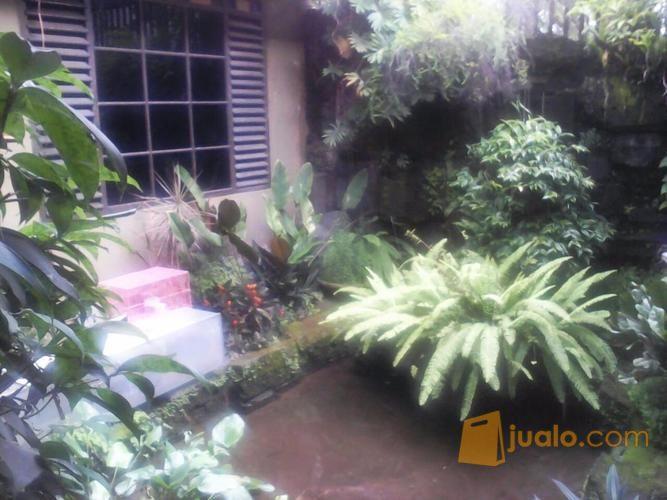 Rumah Kalasan Sleman Dekat Candi Prambanan Bogem Kab Properti 9356183