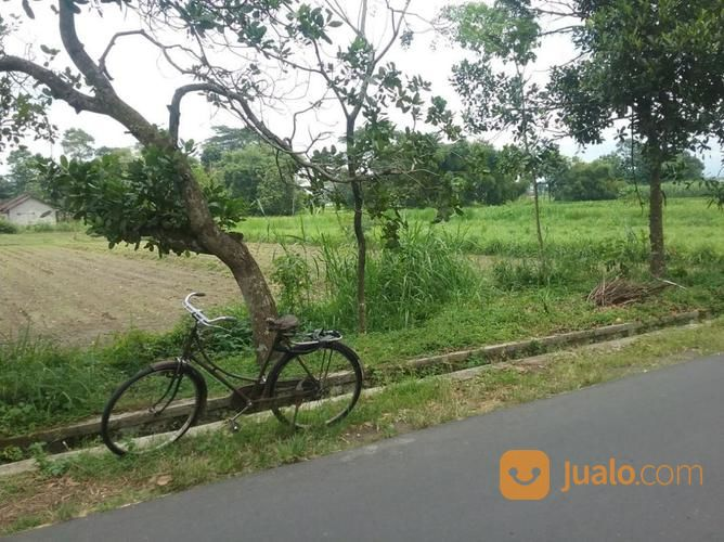 Tanah Timur Candi Prambanan Lokasi Strategis Kab Sleman Jualo Pra