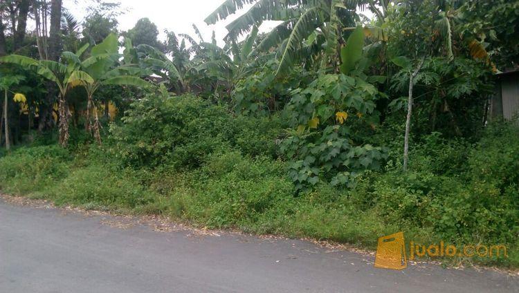 Tanah Purwomartani Kalasan Jogja Dekat Candi Sambisari Kab Sleman