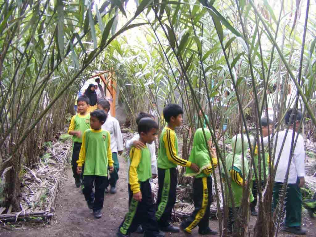 Model Outbound Anak Game Kids 0813 2964 1981 Paket Jasa