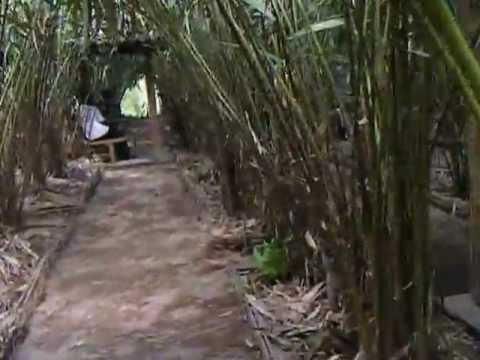 Wisata Pendidikan Omah Salak Hub 02747885585 085228417300 Youtube Edukasi Kab