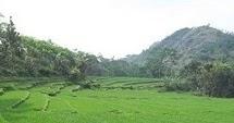 Pesona Keindahan Destinasi Wisata Alam Betisrejo Jambeyan Sragen Jawa Tengah