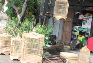 Informasi Umkm Kabupaten Sragen Sangkar Burung Wisata Batik Dewi Arum