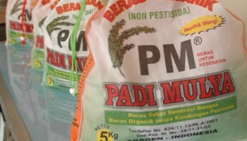 Desa Wisata Batik Kliwonan Masaran Produsen Khas Sragen Pertanian Organik