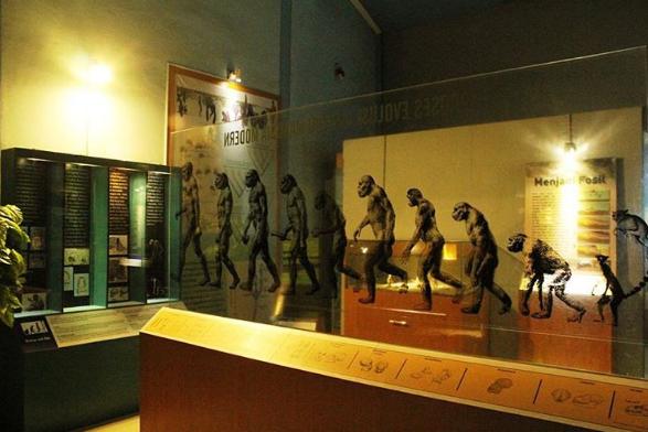 17 Tempat Wisata Sragen Jawa Tengah Wajib Dikunjungi Museum Prasejarah