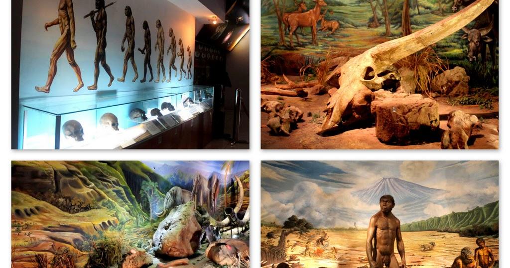 Info Harga Tiket Masuk Wisata Sangiran Sragen 2018 Penawisata Museum