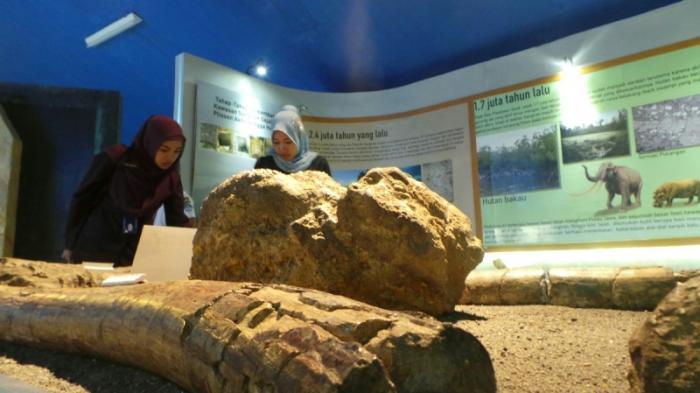 Menelusuri Jejak Manusia Purba Museum Sangiran Sragen Jawa Tengah Wisata