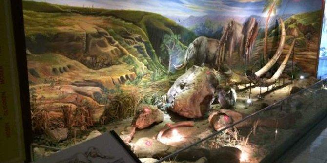 Menengok Kehidupan Manusia Museum Sangiran Merdeka Wisata Prasejarah Kab Sragen