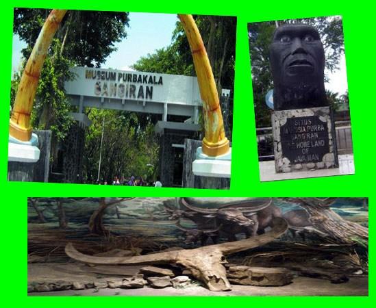 Museum Arkeologi Koleksi Manusia Purba Sangiran Sragen Wisata Prasejarah Kab