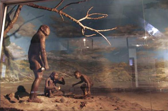 Museum Prasejarah Sangiran Wisata Kab Sragen