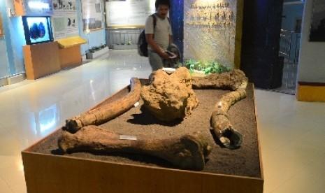 Museum Purbakala Sangiran Jawa Tengah Pesona Keindahan Alam Indonesia Koleksi