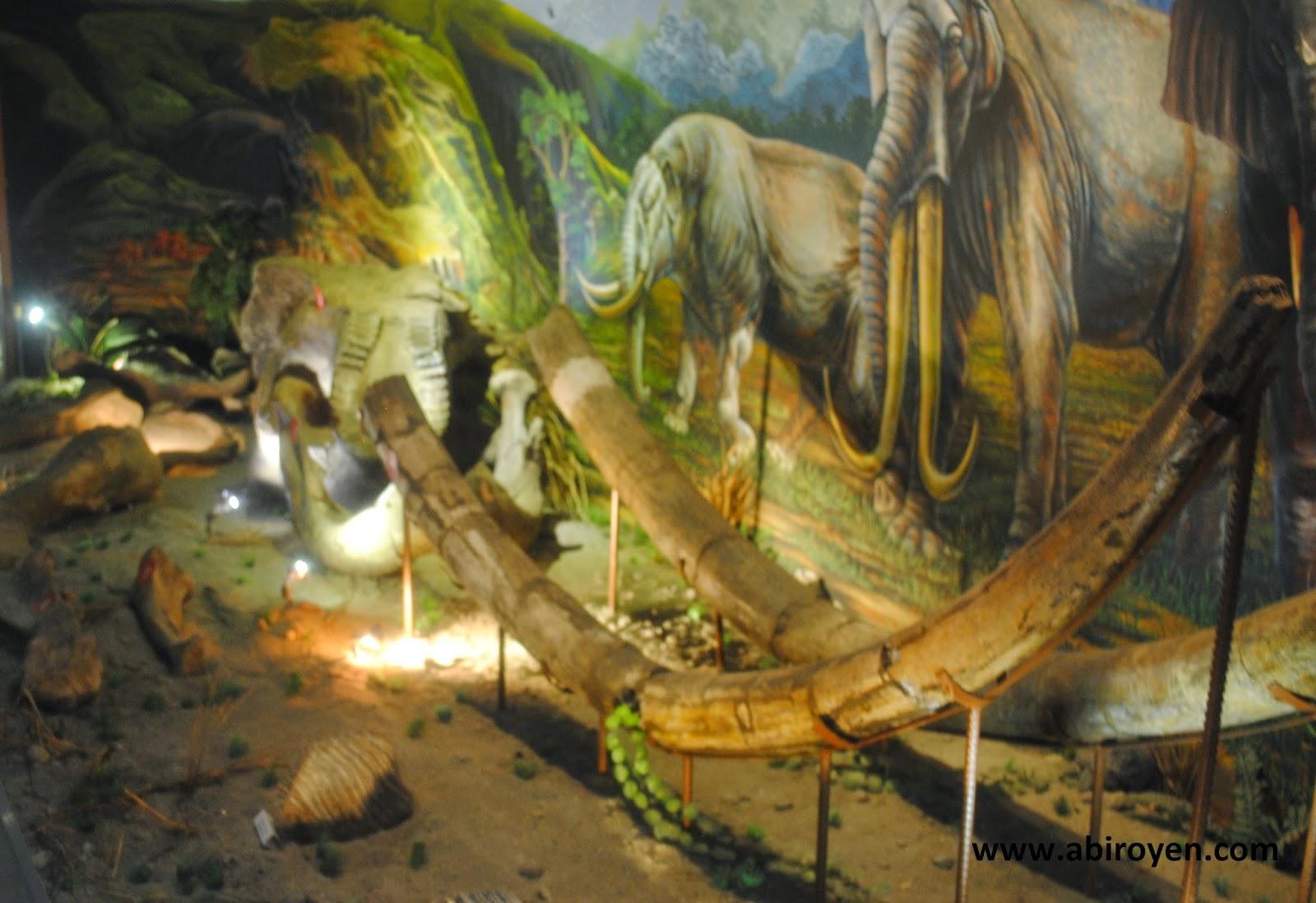 Museum Purbakala Sangiran Sragen Akses Masuk Keunikannya Diaroma 2bsangiran Jalan