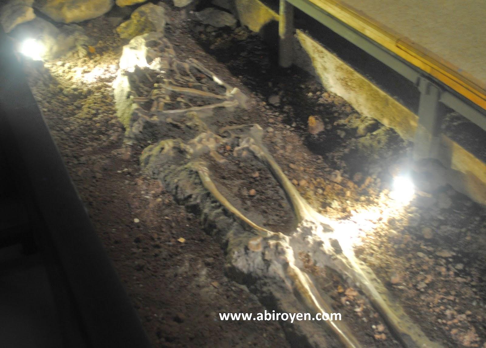 Museum Purbakala Sangiran Sragen Akses Masuk Keunikannya Fosil 2b2 Jalan