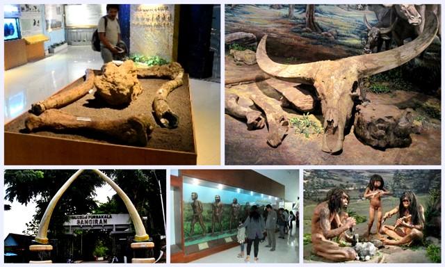 Museum Sangiran Bolehtanya Wisata Prasejarah Kab Sragen