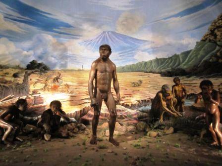 Sangiran Situs Sejarah Awal Manusia Tertua Didunia Website Terdapat Masuk
