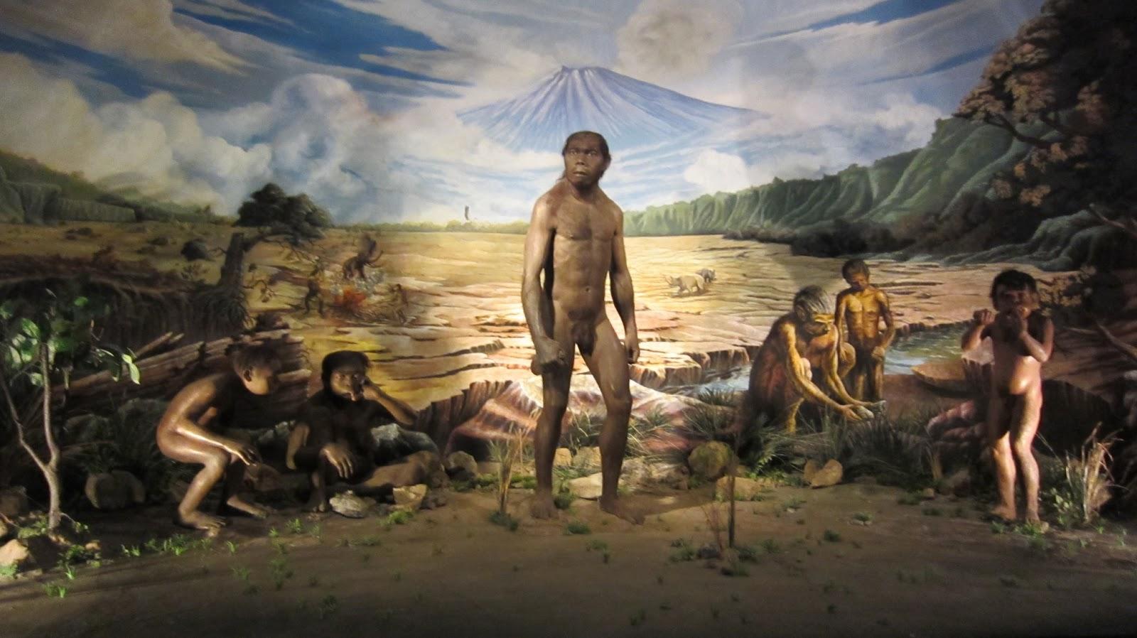 Wisata Edukasi Sejarah Manusia Purba Sangiran Sragen Sobo Srawung Museum