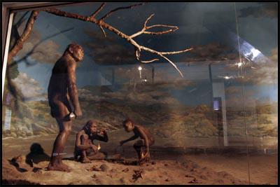 Tempet Tempat Wisata Wajib Kunjungi Berada Sragen Museum Prasejarah Sangiran