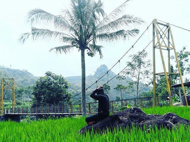 Tempat Menarik Kabupaten Sragen Bumi Sukowati Jembatan Kalipucang Desa Musuk