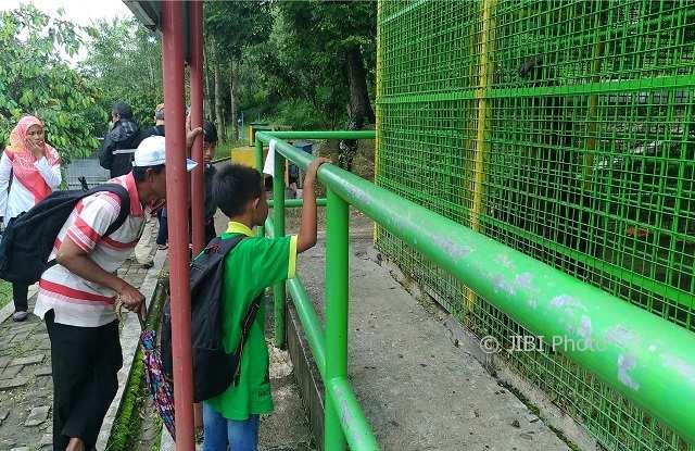 Wisata Wonogiri Desa Sendang Bakal Punya Spot Selfie Berlatar Kandang