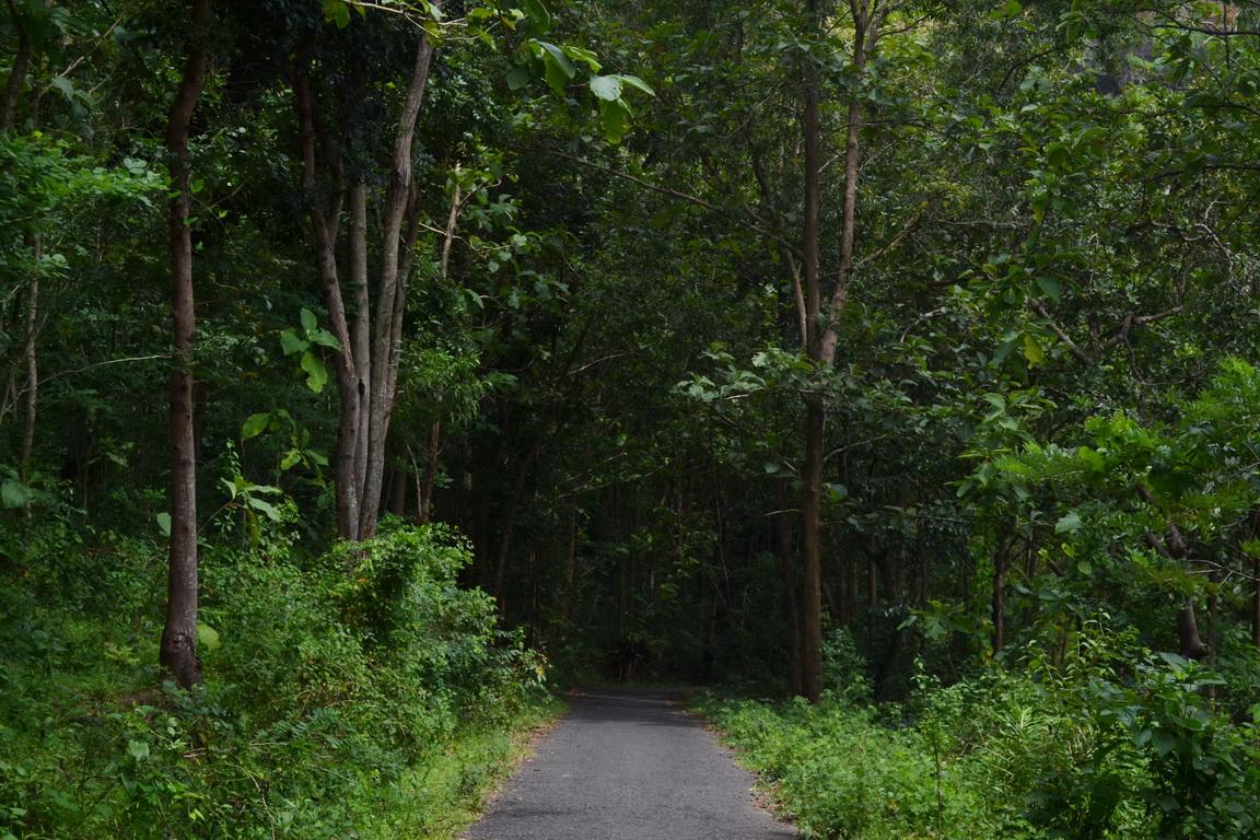 Obyek Wisata Batu Seribu Sukoharjo Makmur Asal Usil Jalan Menuju