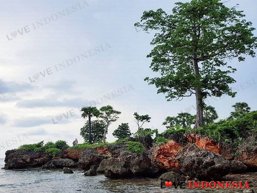 Oksigen Pulau Giliyang Madura Jadi Incaran Wisatawan Dunia Love Gili