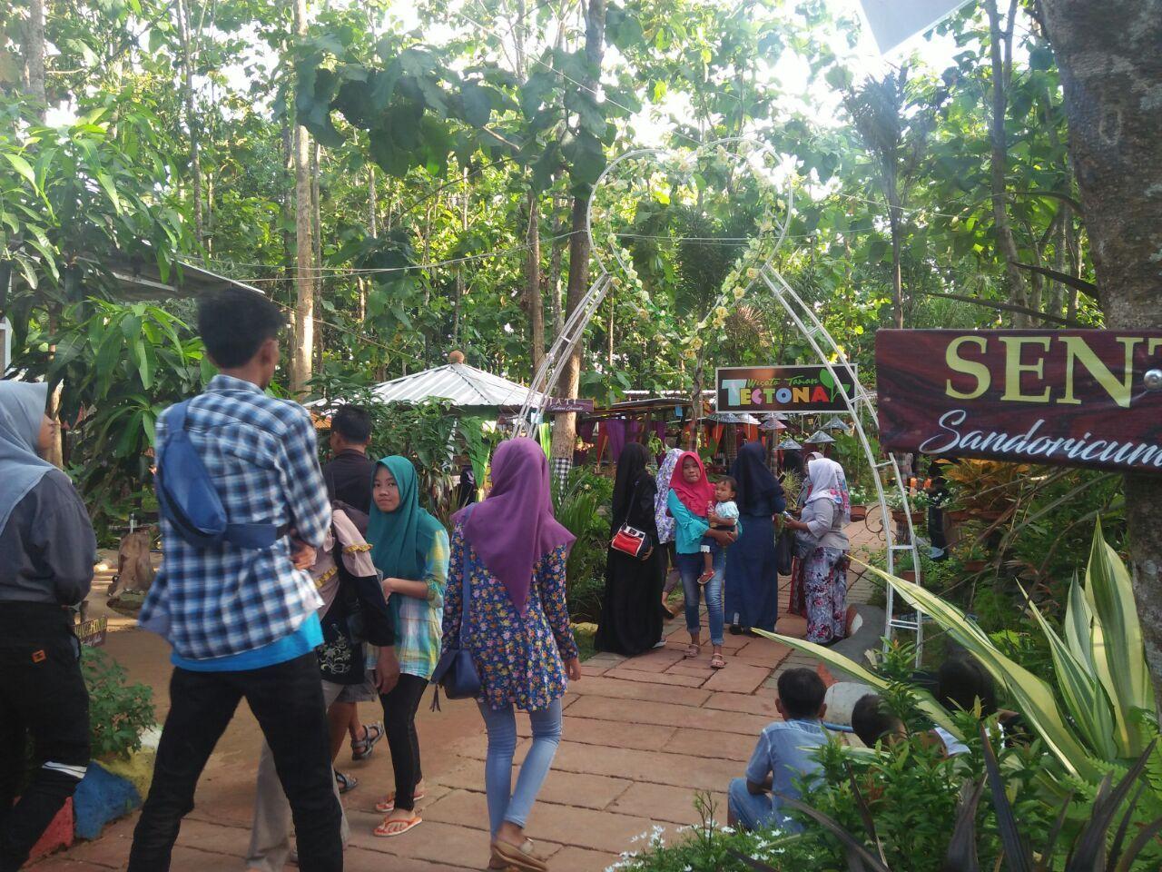 Taman Tectona Jadi Primadona Destinasi Wisata Sumenep Wps Kab