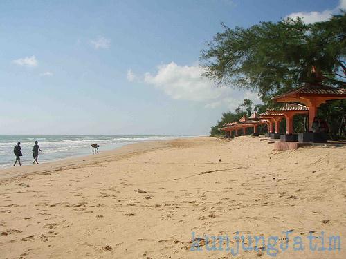 Teduh Cemara Pantai Lombang Sumenep Kunjung Jatim Wisata Ujung Barat