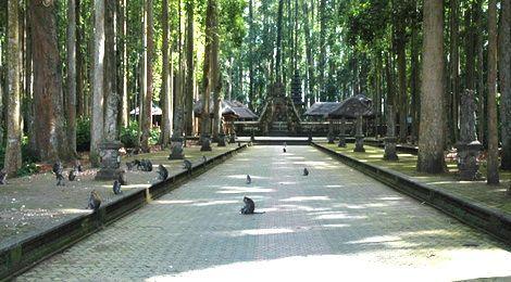 Alas Kedaton Bali Live Guide Home Destination Kab Tabanan