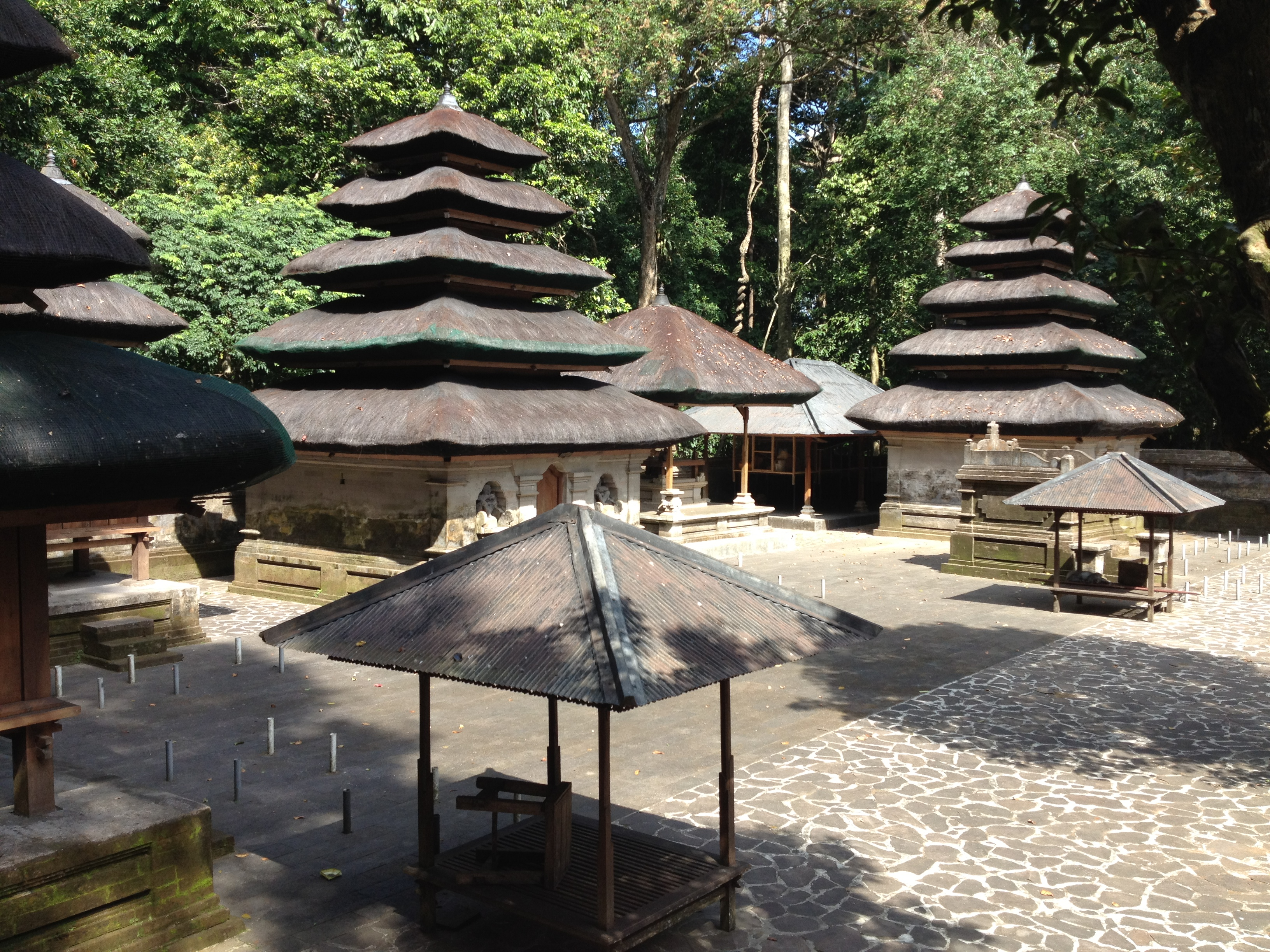 Alas Kedaton Bali Travel Sacred Monkey Forest Tabanan Regency Island