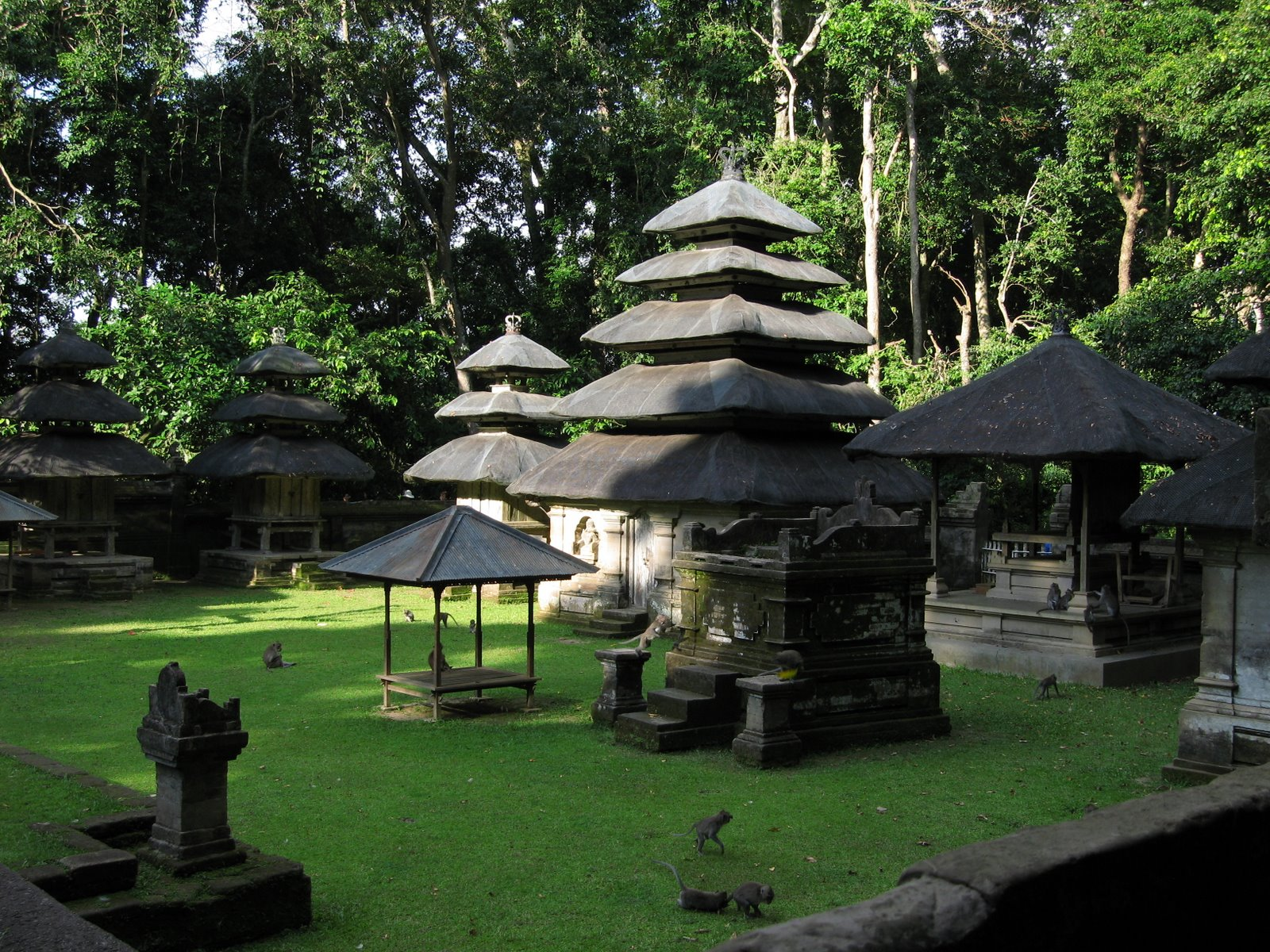 Alas Kedaton Monkey Forest Dj Bali Tour Kab Tabanan