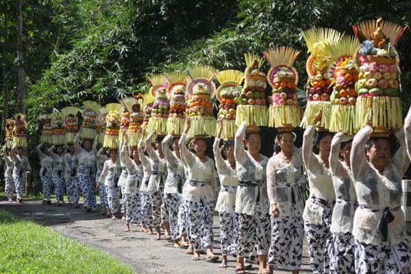 Alas Kedaton Temple Bali Indonesia Tourist Attraction Ceremony Anniversary Attractions