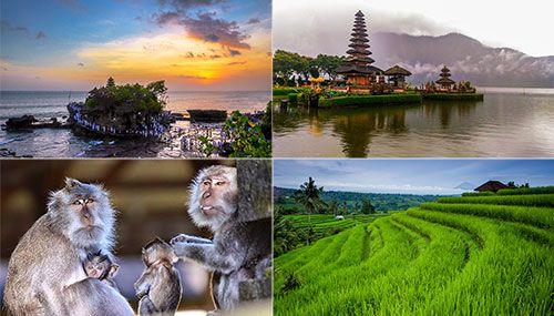 Bali Attractions Places Visit Tabanan Indonesia Alas Kedaton Kab
