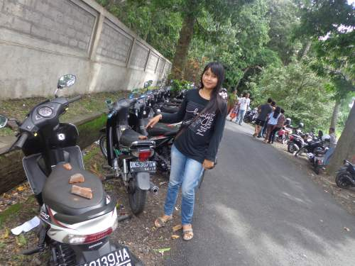 Objek Wisata Alas Kedaton Kabupaten Tabanan Mentari Bali Holiday Motor