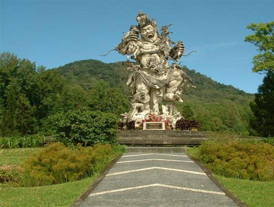 Bedugul Tabanan Afar Bali Indonesia Kebun Raya Kab