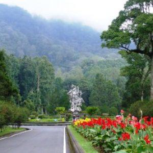 Harga Tiket Masuk Kebun Raya Bedugul Bali Jam Buka Penginapan