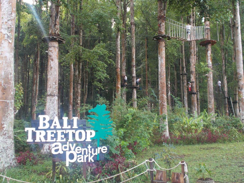 Identifikasi Sda Kebun Raya Bedugul Potensi Nilai Haki Kab Tabanan