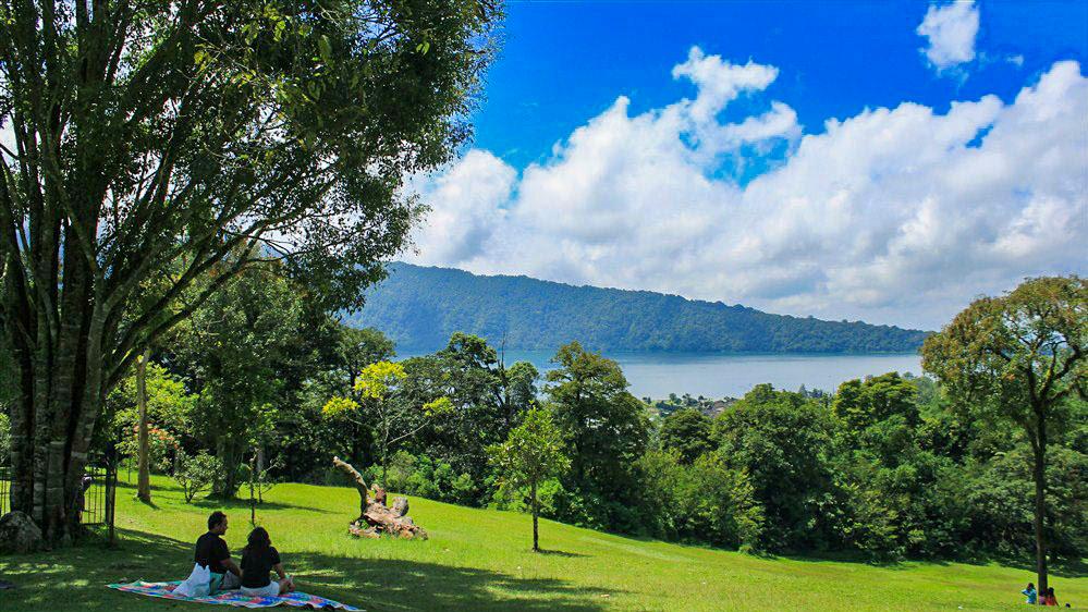 Kebun Raya Bedugul Informasi Piknik Bali Kawasan Ditumbuhi Pepohonan Mulai