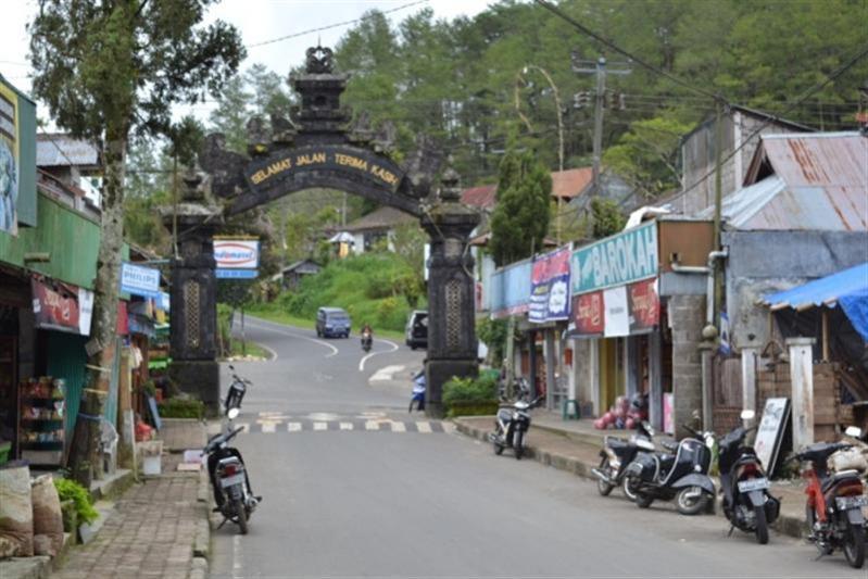 Tanah Dijual 10 Dekat Kebun Raya Bedugul Tjbe014 Rumah Bali