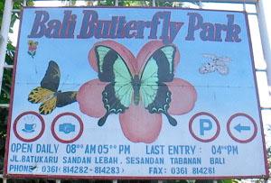 Bali Butterfly Park Largest Asia Tour Hotel Tabanan Taman Kupu