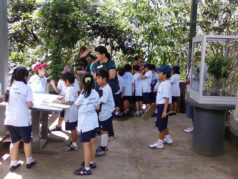 Berlibur Taman Kupu Bali Paket Tour Murah Error Occurred Kab