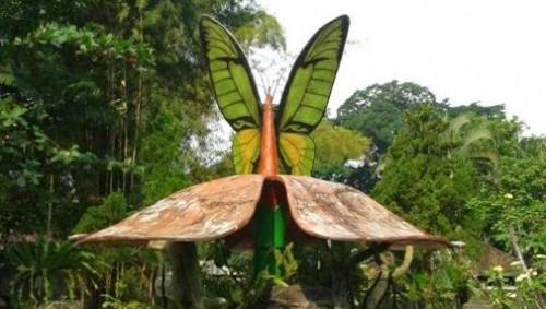 Butterfly Park Bali Sewa Mobil Paket Wisata Taman Kupu Tabanan