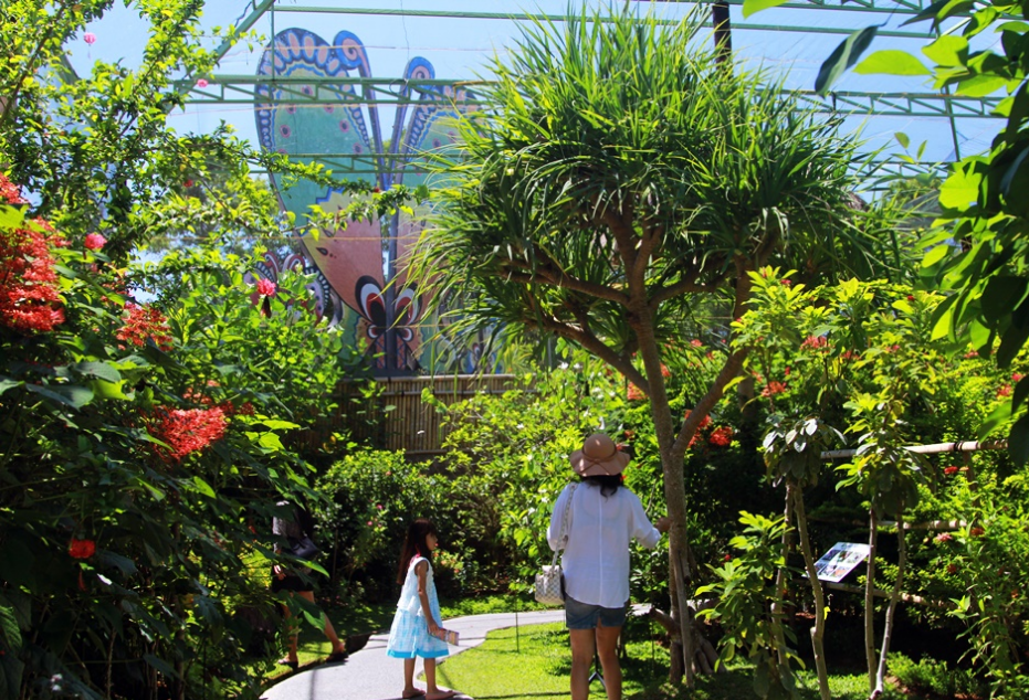 Taman Kupu Bali Butterfly Park Informasi Wisata Tabanan Keseruannya Tidak