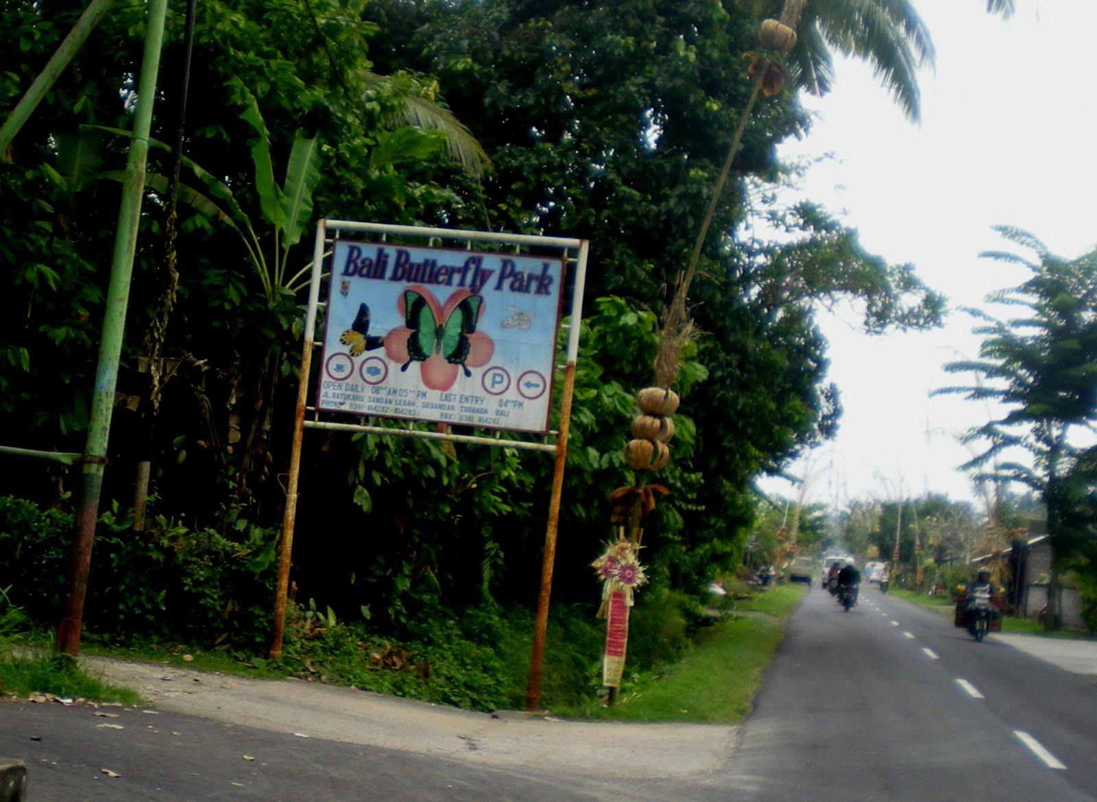 Taman Kupu Bali Tri Hartadi House Kab Tabanan