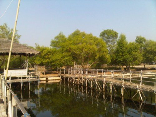 Pemancingan Mangrove Tangerang Pantai Tanjung Burung Kab